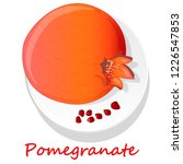 pomegranate hand drown vector... | Shutterstock .eps vector #1226547853