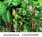 home  house plant garden   Shutterstock . vector #1226554300