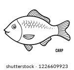 coloring book for children  carp | Shutterstock .eps vector #1226609923