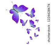 beautiful pink butterflies... | Shutterstock .eps vector #1226628676