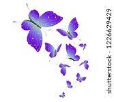beautiful pink butterflies... | Shutterstock . vector #1226629429