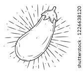 eggplant. hand drawn vector... | Shutterstock .eps vector #1226638120