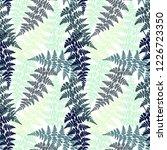fern frond herbs  tropical... | Shutterstock .eps vector #1226723350
