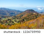 view of the autumn leaves of...   Shutterstock . vector #1226735950