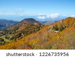 view of the autumn leaves of...   Shutterstock . vector #1226735956