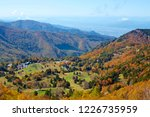 view of the autumn leaves of...   Shutterstock . vector #1226735959