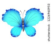 beautiful butterflies  blue... | Shutterstock .eps vector #1226960953