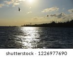 stanbul bosphorus sunset | Shutterstock . vector #1226977690