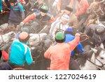 shymkent  kazakhstan  november... | Shutterstock . vector #1227024619