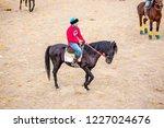 shymkent  kazakhstan  november... | Shutterstock . vector #1227024676