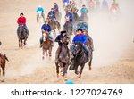 shymkent  kazakhstan  november... | Shutterstock . vector #1227024769