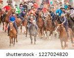shymkent  kazakhstan  november... | Shutterstock . vector #1227024820