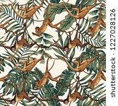 wild animal monkeys on creepers ...   Shutterstock .eps vector #1227028126