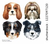 portrait cute dog set isolated... | Shutterstock . vector #1227097120