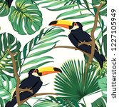 toucan birds natural habitat in ... | Shutterstock .eps vector #1227105949