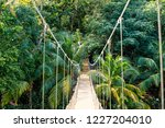 jungle rope bridge hanging in... | Shutterstock . vector #1227204010
