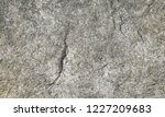 gray and brown textured stone... | Shutterstock . vector #1227209683