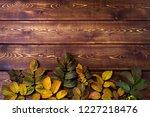 thanksgiving rustic greeting... | Shutterstock . vector #1227218476