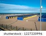 mar del plata  argentina   26... | Shutterstock . vector #1227220996