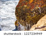waves of the atlantic ocean... | Shutterstock . vector #1227234949