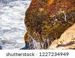 waves of the atlantic ocean... | Shutterstock . vector #1227234949