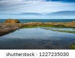 unusual background of stones ... | Shutterstock . vector #1227235030