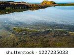 unusual background of stones ... | Shutterstock . vector #1227235033