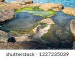 unusual background of stones ... | Shutterstock . vector #1227235039