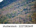 late autumn scenery of oku... | Shutterstock . vector #1227282649