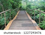 nature study trail in the... | Shutterstock . vector #1227293476