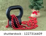 black kettlebell on a green... | Shutterstock . vector #1227316609
