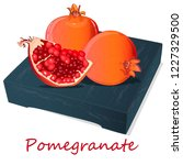 pomegranate hand drown vector... | Shutterstock .eps vector #1227329500