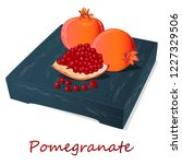 pomegranate hand drown vector... | Shutterstock .eps vector #1227329506