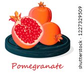 pomegranate hand drown vector... | Shutterstock .eps vector #1227329509