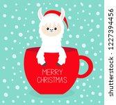 merry christmas. alpaca llama... | Shutterstock .eps vector #1227394456