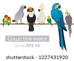 parrots. set isolated birds on... | Shutterstock .eps vector #1227431920