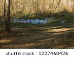 garbage in forest. people... | Shutterstock . vector #1227460426