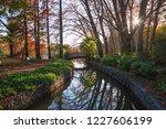 autumn mood at a small bridge... | Shutterstock . vector #1227606199