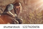 long haired knight with the two ... | Shutterstock . vector #1227620656