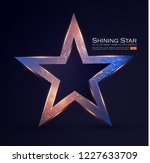 gold star sign with glitter and ... | Shutterstock .eps vector #1227633709