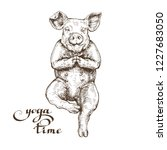 happy funny pig lotus pose yoga ... | Shutterstock .eps vector #1227683050