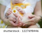 happy family in nature. woman... | Shutterstock . vector #1227698446