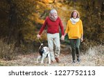Stock photo a senior couple with a dog on a walk in an autumn nature 1227752113