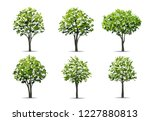 collection of realistic tree... | Shutterstock .eps vector #1227880813