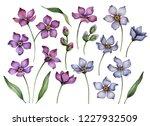 set of watercolor flowers... | Shutterstock . vector #1227932509