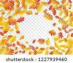 oak  maple  wild ash rowan... | Shutterstock .eps vector #1227939460