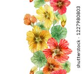 beautiful nasturtium flowers... | Shutterstock . vector #1227980803