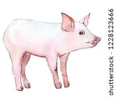 pig animal in a watercolor... | Shutterstock . vector #1228123666