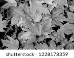 fall leaves. halftone with... | Shutterstock . vector #1228178359