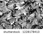 fall leaves. halftone with... | Shutterstock . vector #1228178413